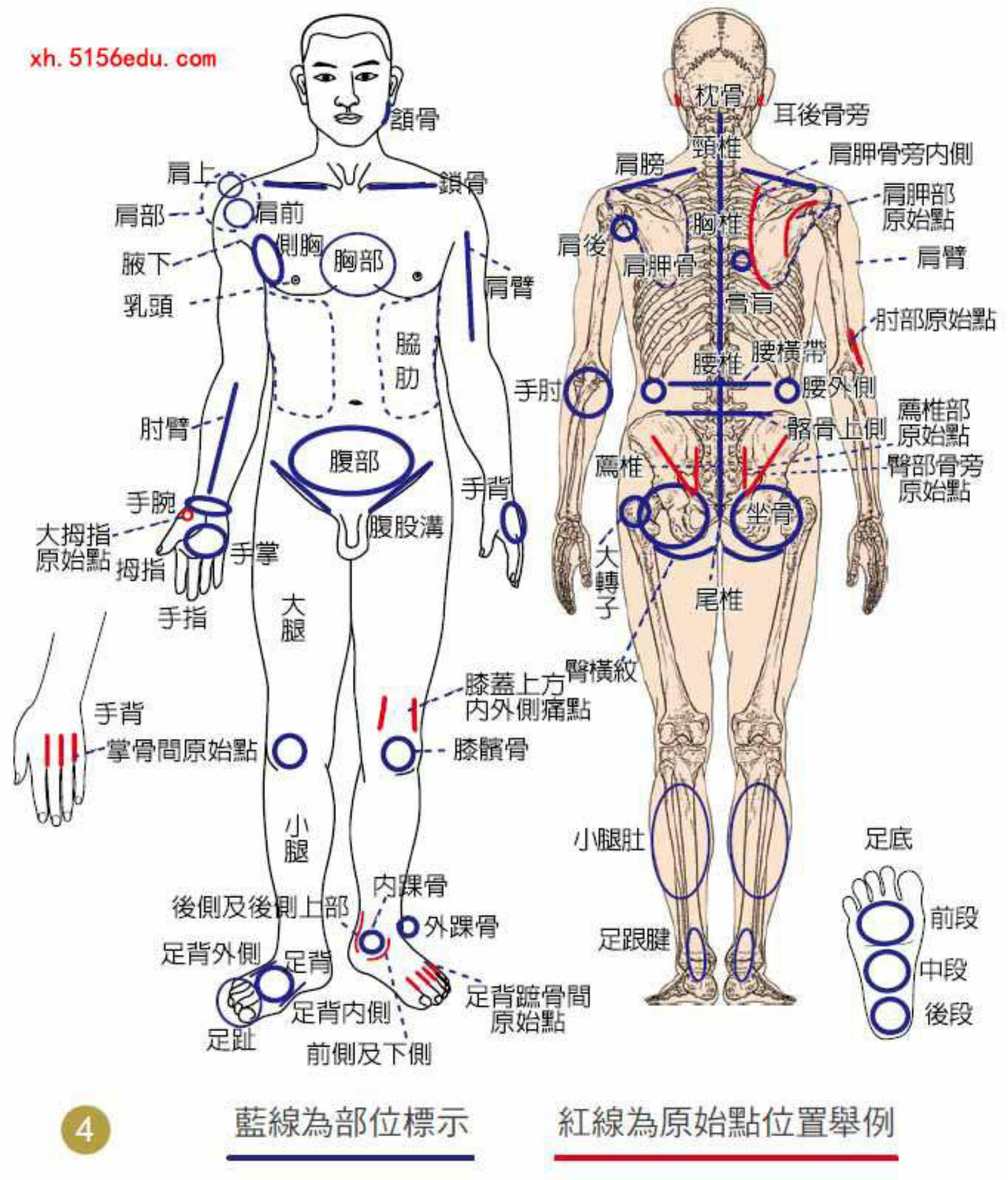 Massage phục hồi sức khỏe
