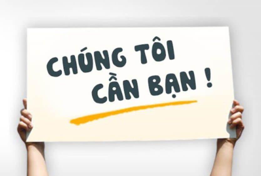 Digital Marketing Executive Siêu Việt Group
